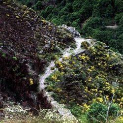 Chemins escarpés autour de Barre-des-Cévennes