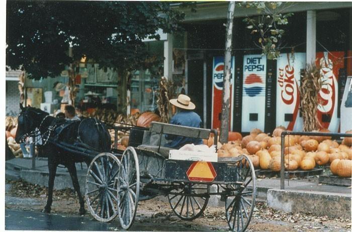 Amish aux USA
